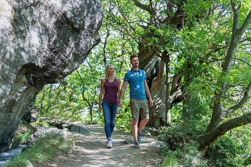 Waldliebe beim Spazieren gehen
