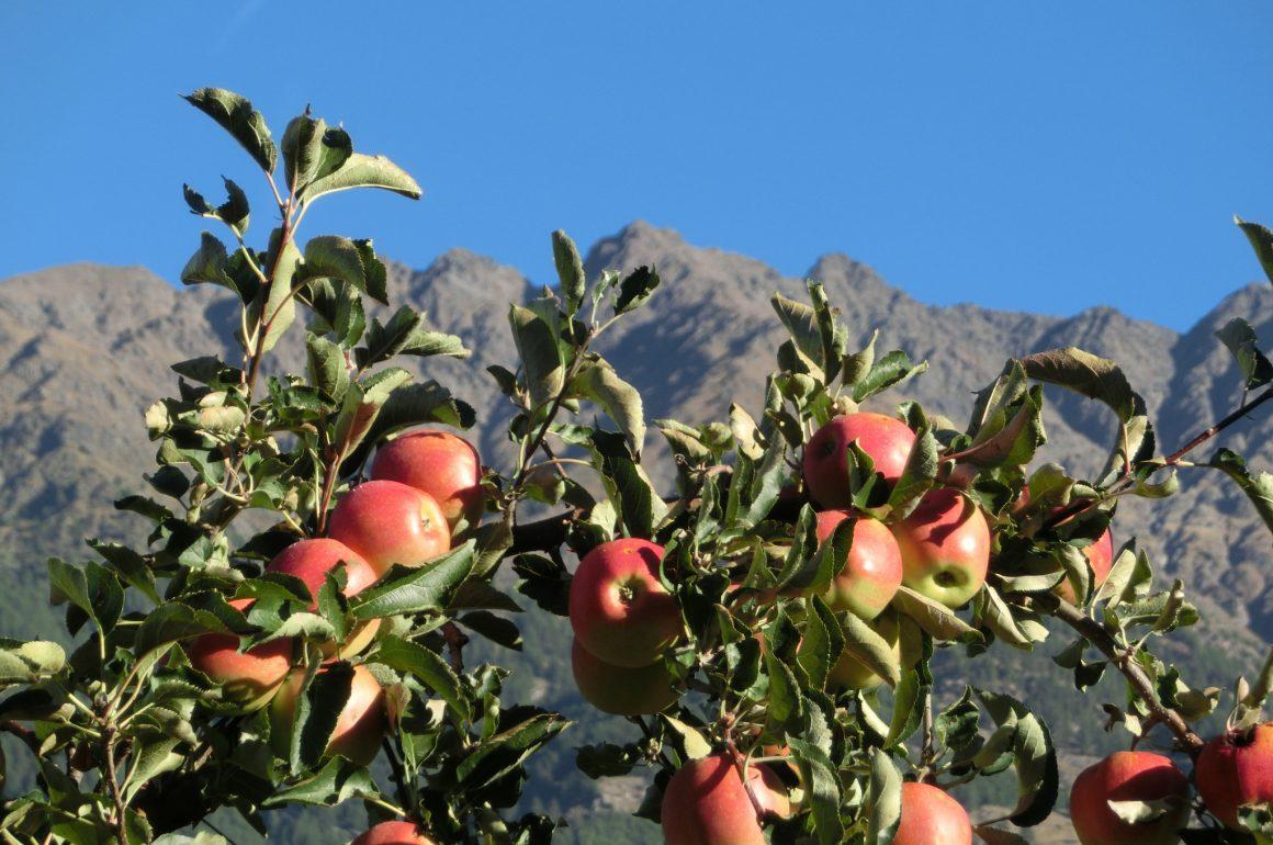 Südtirol Urlaub im Herbst